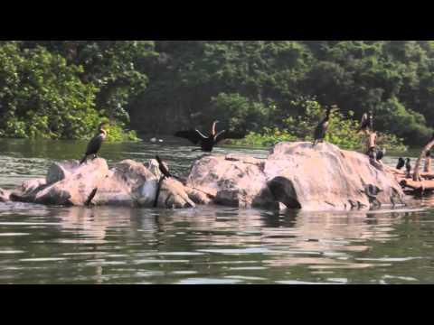 Source of River Nile - Jinja, UGANDA 2016