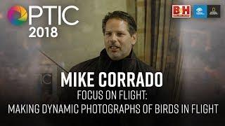 Optic 2018   Focus on Flight: Making Dynamic Photographs of Birds in Flight   Mike Corrado
