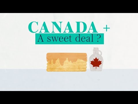 What is the Canada+ Brexit proposal?