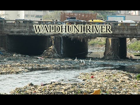 Ulhasnagar Municipal Corporation and others have to pay 100 crore fine for Waldhuni river