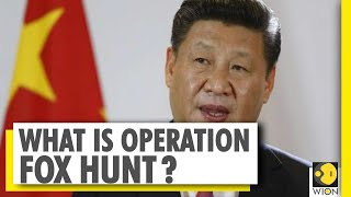 All you need to know about China's espionage programme 'Operation Fox Hunt'