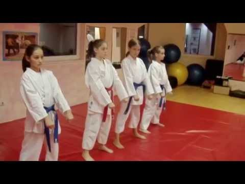 Karate Shotokan Little Girls Training Cheetah Club