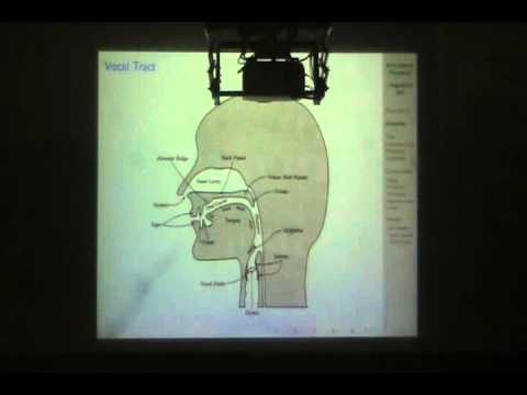 Module One Video Lecture 2: Articulatory Phonetics /LING_201-Lecture 2