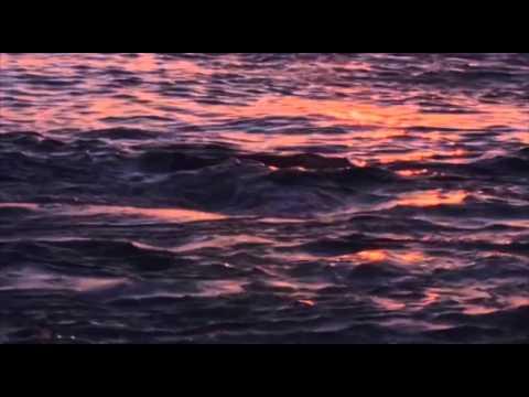 Julio Iglesias - Hey (English Then Spanish)