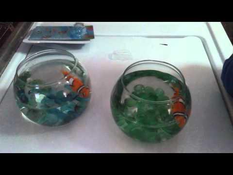 Dollar tree diy 3 youtube for Dollar tree fish bowls