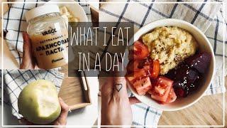ЧТО Я ЕМ ЗА ДЕНЬ? Арахисовая Паста, Комбуча и Арбуз на Десерт|| Alyona Burdina