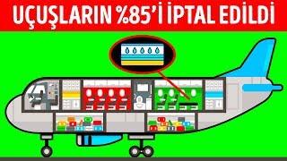 Su Yatakları ve Organik Yemekler Sunan Havayolu Şirketini Ne Mahvetti?