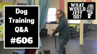 Dog Training - Dog in Heat - Fighting Dogs - What Would Jeff Do? Q&A  Ep.606 (2019)