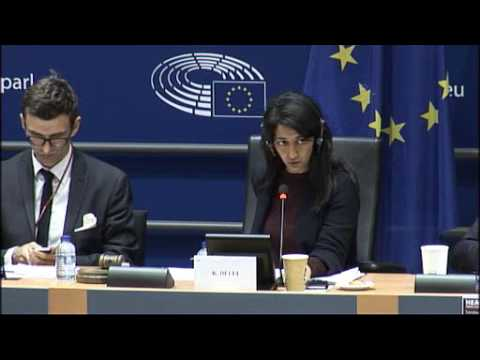 Airports/Airlines the impact of Brexit on Aviation, European Parliament Hearing - Unravel Travel TV