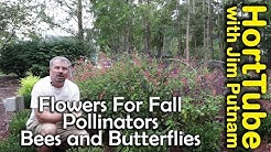 Attracting Pollinators to the Fall Garden - 🐝🦋🍯 - Bees and Butterflies