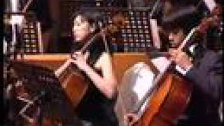 Vivaldi Double Cello Concerto (slow movement)