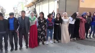 şevko halay Gaziantep işte o mükemmel Düğün kameraman memik bayram 2020