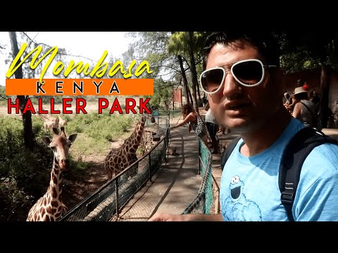 Haller Park Mombasa Amazing Experience & What was not good?