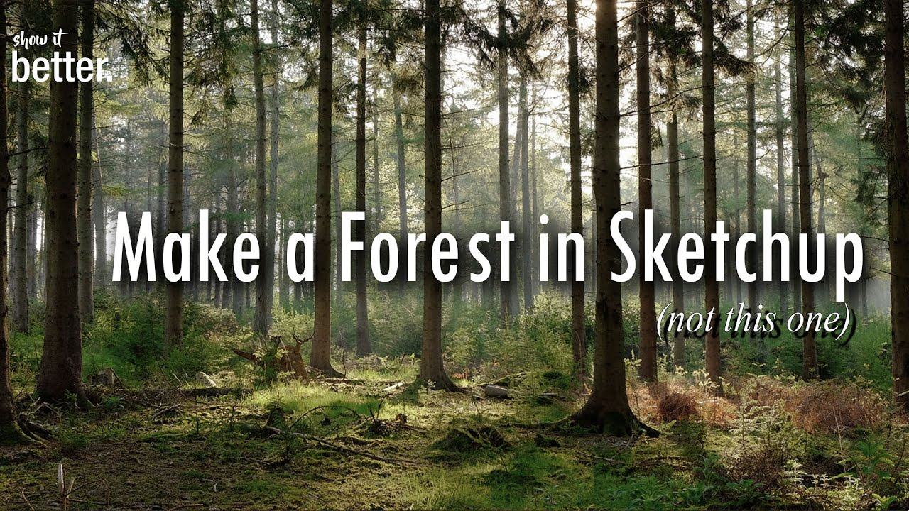 Making a forest in sketchup and vray architecture for Rendering gratis