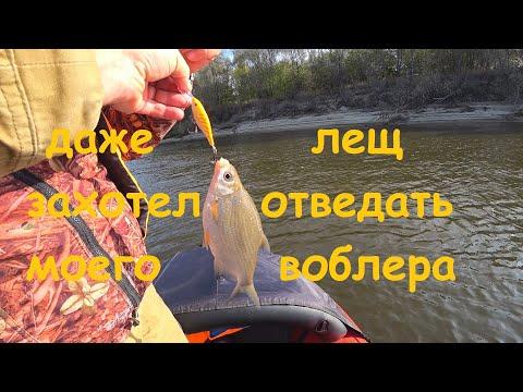 Рыбалка на Оке троллингом, даже лещ захотел отведать моего воблера!!!