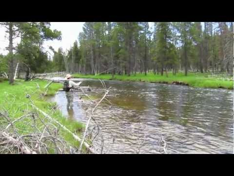 Yellowstone Spring Fly Fishing