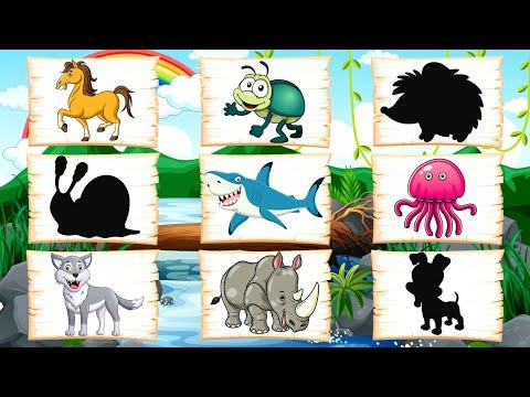 Развивающие МУЛЬТИКИ про животных для детей - Найди чья тень ! Развивающие игры для малышей