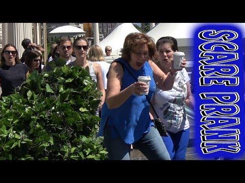 NEW Las Vegas Bushman - FUNNY VIDEO - OLD SCHOOL PRANK