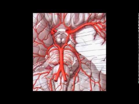 Менингиома головного мозга последствия после операции