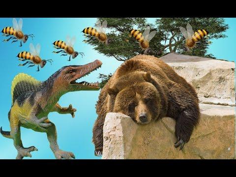 МИШКА, НЕ ВОРУЙ!!! Жало в нос! Динозавры и медведь. Мультики про динозавров для детей. Игрушки