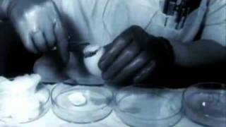 The Human Zoo Science's Dirty Little Secret pt 3 of 4 [MIRROR]