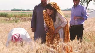 Reham Khan was crying in pain for 2 days l #MyPakistan