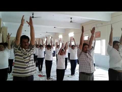 International Yoga day - 2017
