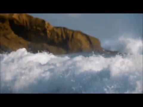 Free Download Laguna Beach Rogue Waves Mp3 dan Mp4