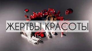 ТЕСТЫ на ЖИВОТНЫХ. ЖЕРТВЫ красоты / Animal testing #тестынаживотных Юлия Медведева