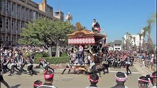 令和元年 岸和田だんじり祭(本宮)こなから坂 Kishiwada Danjiri Matsuri2019/9/15
