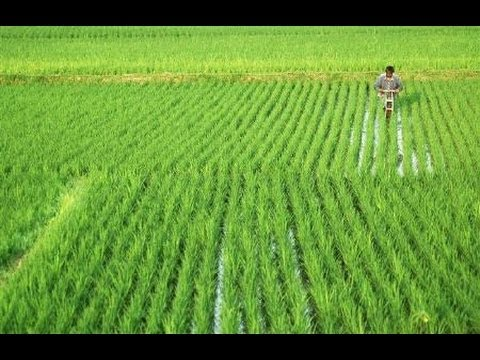 Jantantra Aapke Dwaar on Genetically Modified Crops