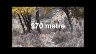 kemal aktaş  bulgaristan alageyik avı 270 metre