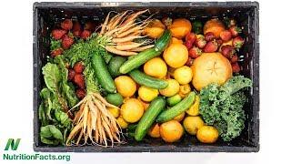 Specifické receptory pro cenné živiny z ovoce a zeleniny