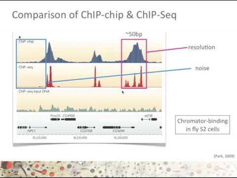 ChIP-chip vs ChIP-Seq