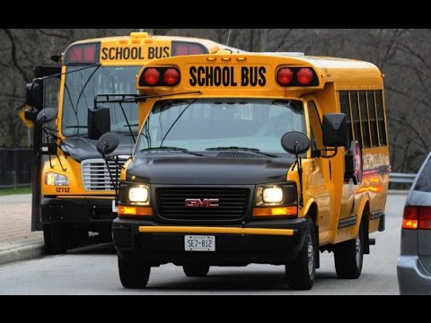 3 TRUE SCARY SCHOOL BUS HORROR STORIES