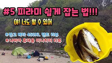 서울근교 무박캠핑 / 일영계곡 노지 / 누구나 쉽게 피라미 잡는 법