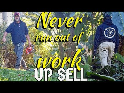 Upsell to current Lawn Care customers - Garden Clean Up