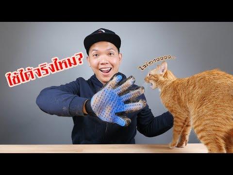 ถุงมือแปรงขน สำหรับสัตว์เลี้ยงที่คุณรัก