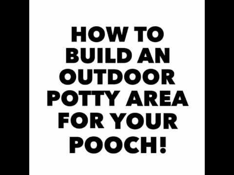 how to make a dog potty