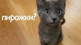 soviet-style-piroshki-пирожки-with-komrade-kat