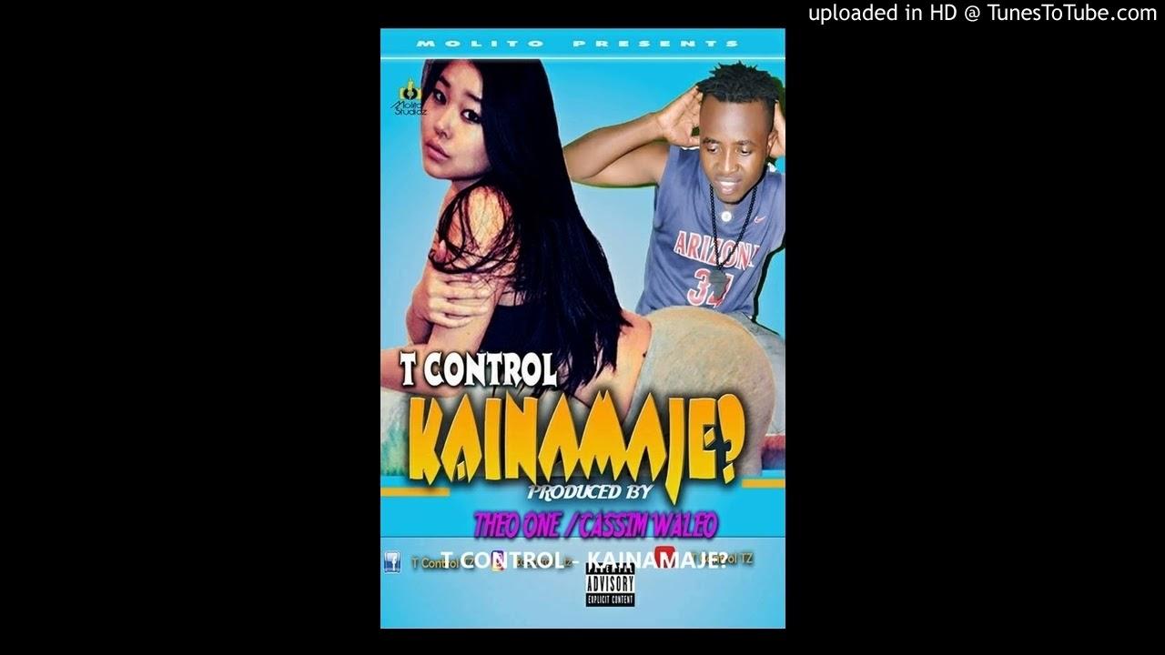 Download T CONTROL - KAINAMAJE?