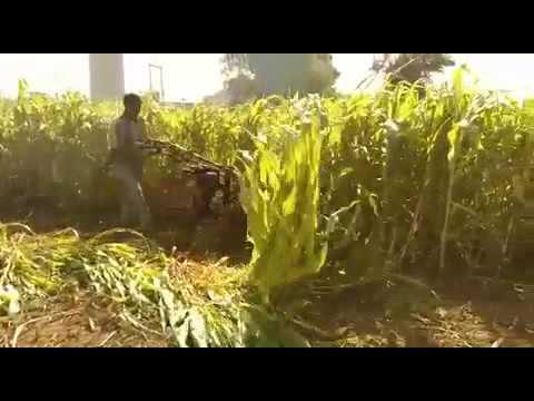 NPR Reaper for Bajra Makkha & Jowar