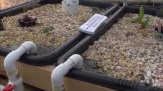 Bio Filter Is Now A Swirl Filter: Hot Tub Aquaponics