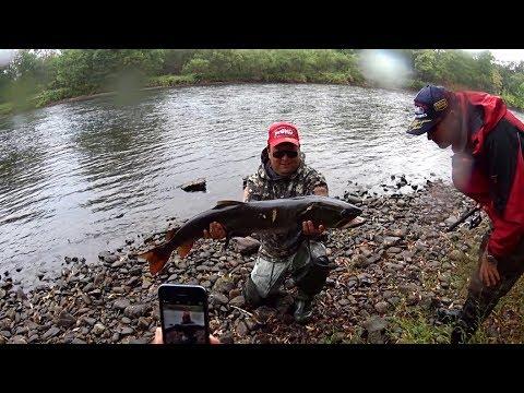 Какую рыбу можно ловить на спиннинг 3-15 гр. и шнур 0.128 мм ?! Да вот такую !!! Итоги 2017.