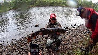 Яку рибу можна ловити на спінінг 3-15 гр. і шнур 0.128 мм ?! Так ось таку !!! Підсумки 2017.