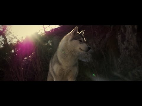 Marks & Fash Flaga - IEU [OFFICIAL VIDEO]