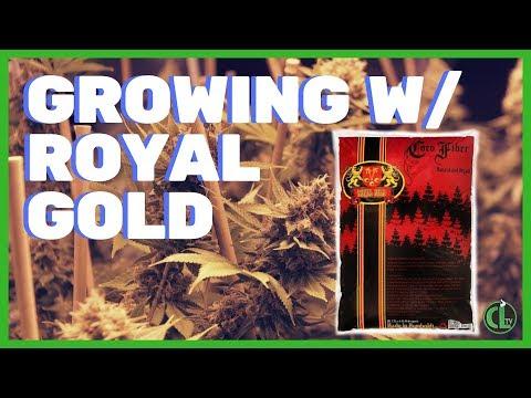 Royal Gold Soil Mixes Breakdown