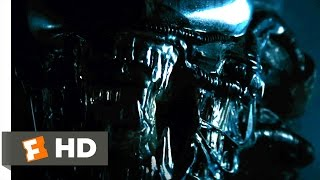 Alien 1979 - The Alien Appears Scene 35  Movieclips
