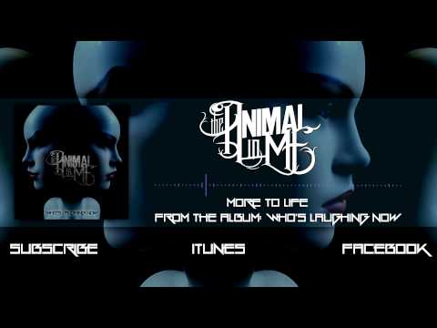 Клип The Animal In Me - More To Life