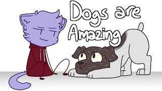 Why Dogs Are Amazing Animation